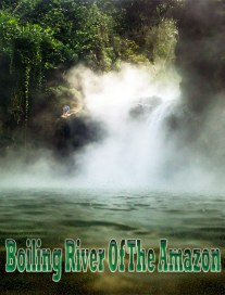 Boiling River In The Amazon Rainforest