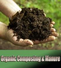 Organic Composting & Manure