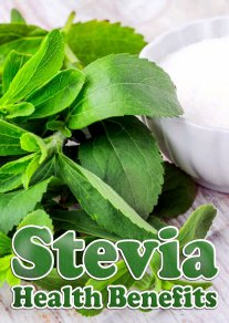 Stevia Health Benefits and Facts
