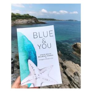 Blue & You Wellbeing Journal