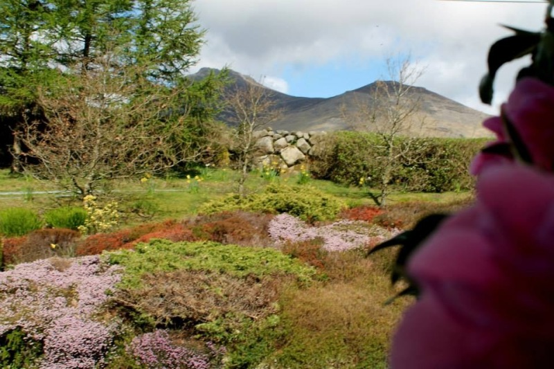 The Quiet Garden in Mourne