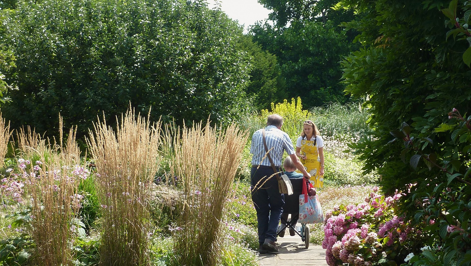 NGS Gardens And Health Week – 18-24 August 2018