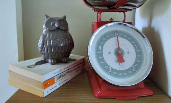 My owl has better balance than me.