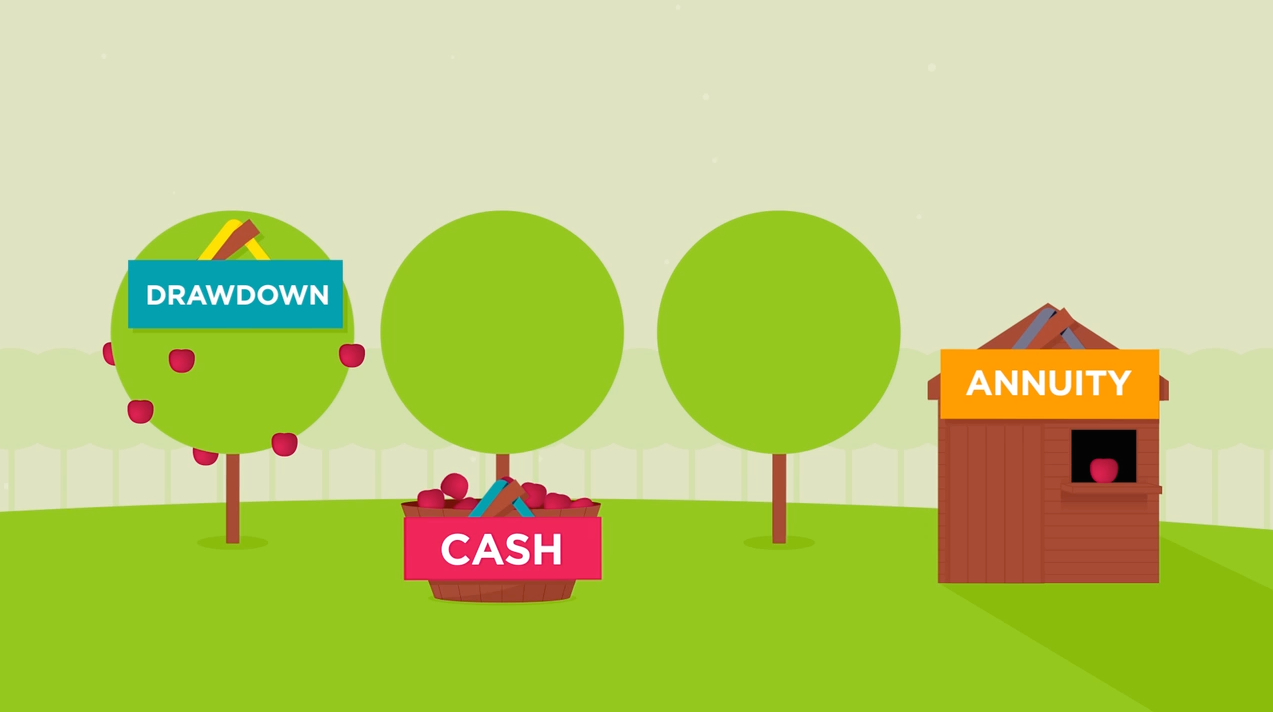 Animation: Your 3 pension options in 3 minutes