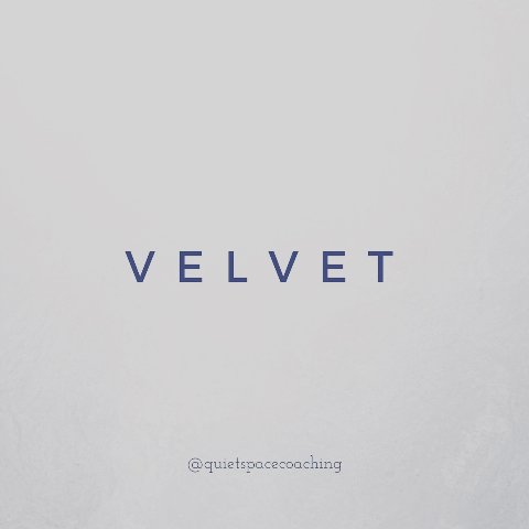 Velvet virtual coaching
