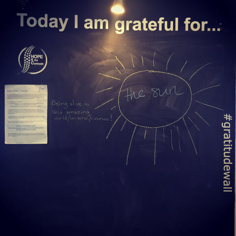 Today I am grateful for