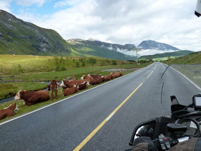 As melhores estradas da Noruega