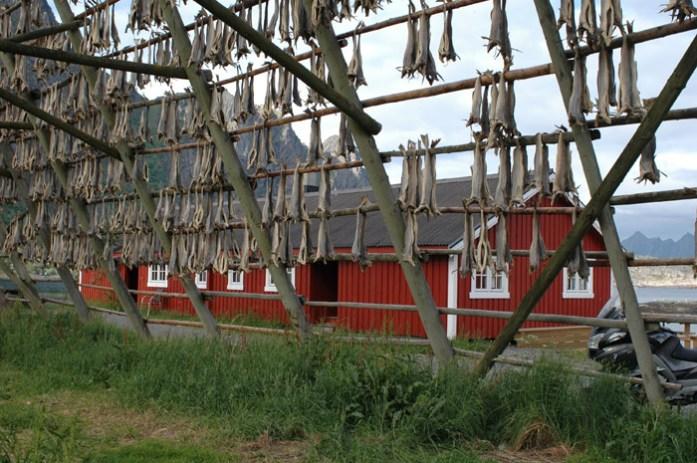 Svinøya Rorbuer em Svolvaer. Alojamento em casinhas de Pescadores
