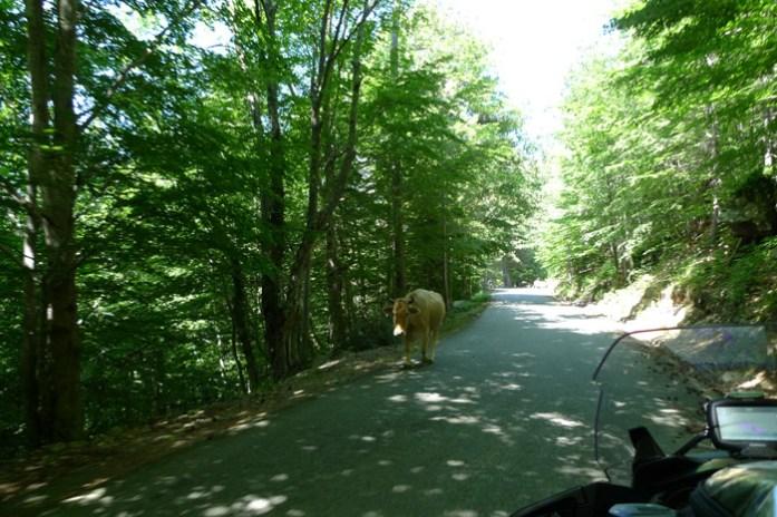 melhores estradas para andar de mota col de sorba
