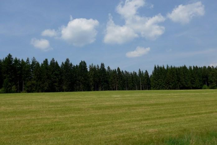 Rota panorâmica da Floresta Negra. Estrada B500