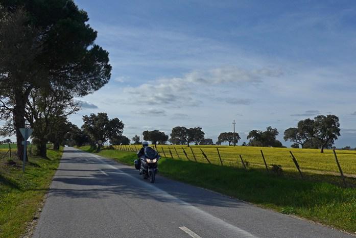 Em Ponte de Sor na com a chegada da Primavera. Estrada N2