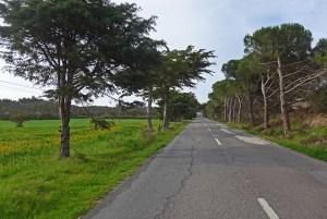 Estrada N120.