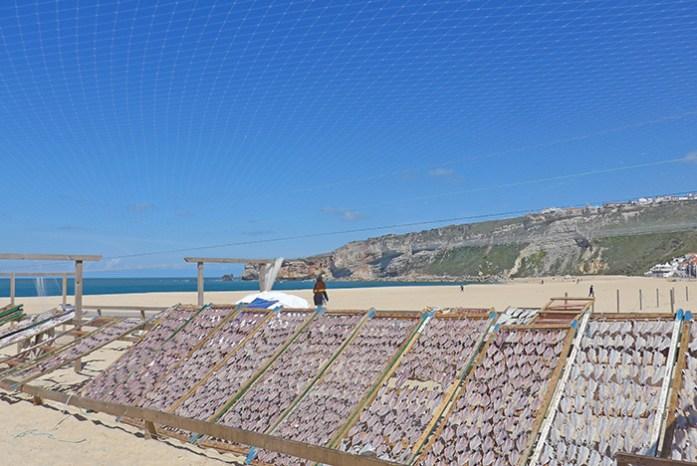 Seca de peixe na Praia da Nazaré.