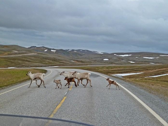Estrada E69 Noruega.