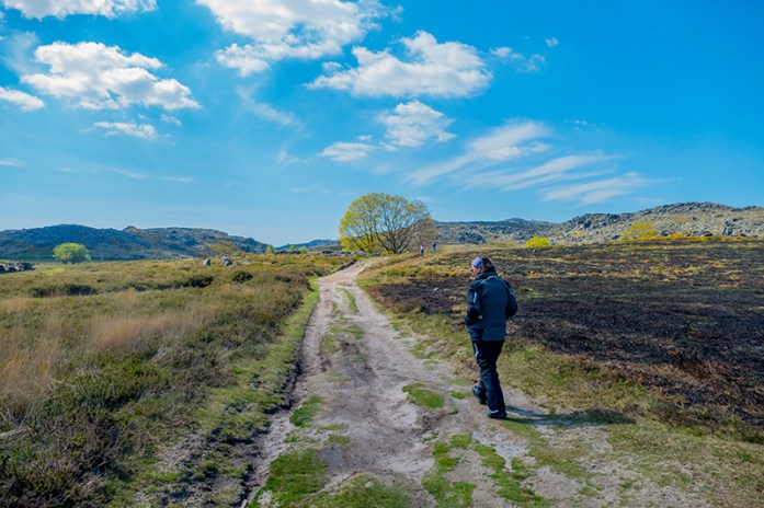 Caminho pedestre de acesso às Pedras Broas (a 100m da estrada)