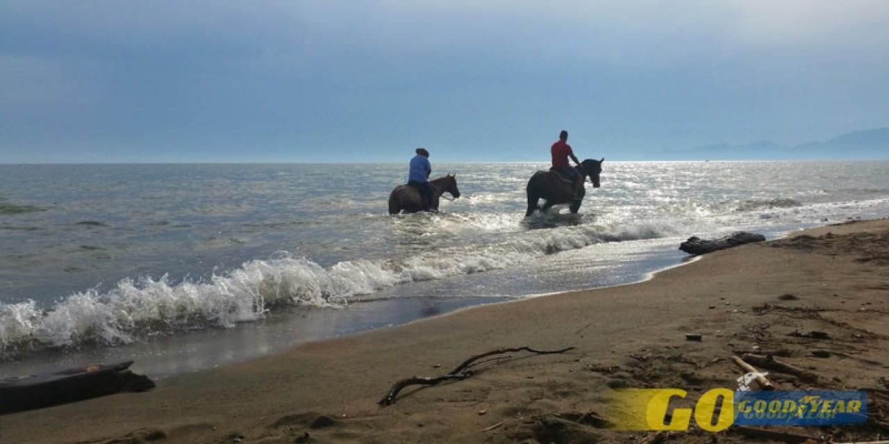 A cavalo -Quilometrosquecontam