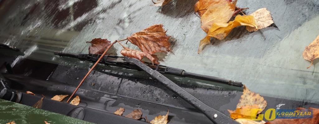 5 conselhos para a manutenção do seu carro no outono