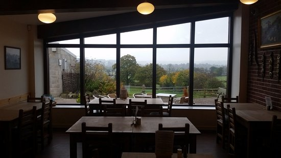 view-from-the-cafe