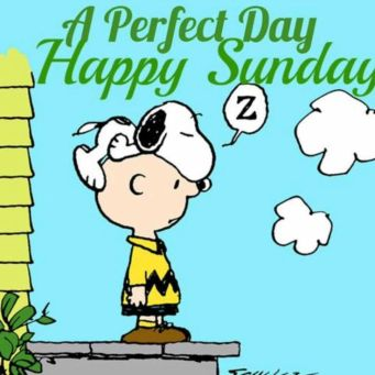 c2633ec8c6c8e42c8a6d0754d5d5e151--happy-sunday-snoopy-peanuts