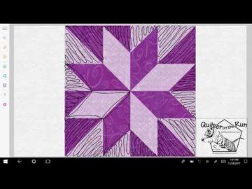 Free Motion Quilting Ideas Lemoyne Star Variation #6