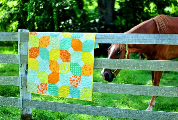 Citrus and Mint baby quilt on fence with horse Lindsay Connor
