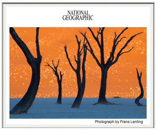 Inspiration: Frans Lanting Namibia Photograph