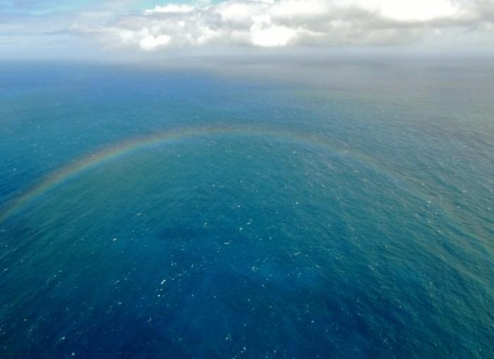 Pacific Rainbow