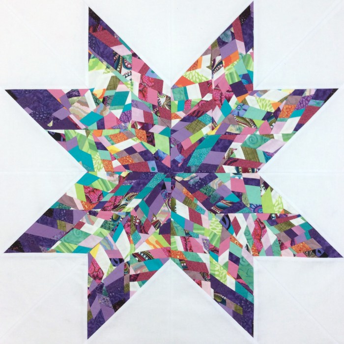 QuiltCon Charity Quilt Tiny Piecing 24 Inch Finished Star