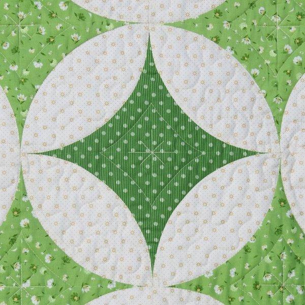 Pistils & Pollen Detail