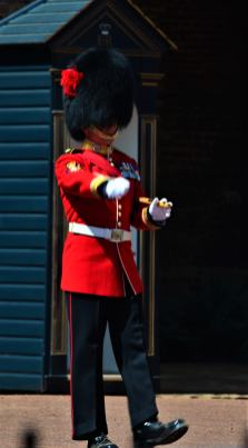 The New Guards at St. James Palace