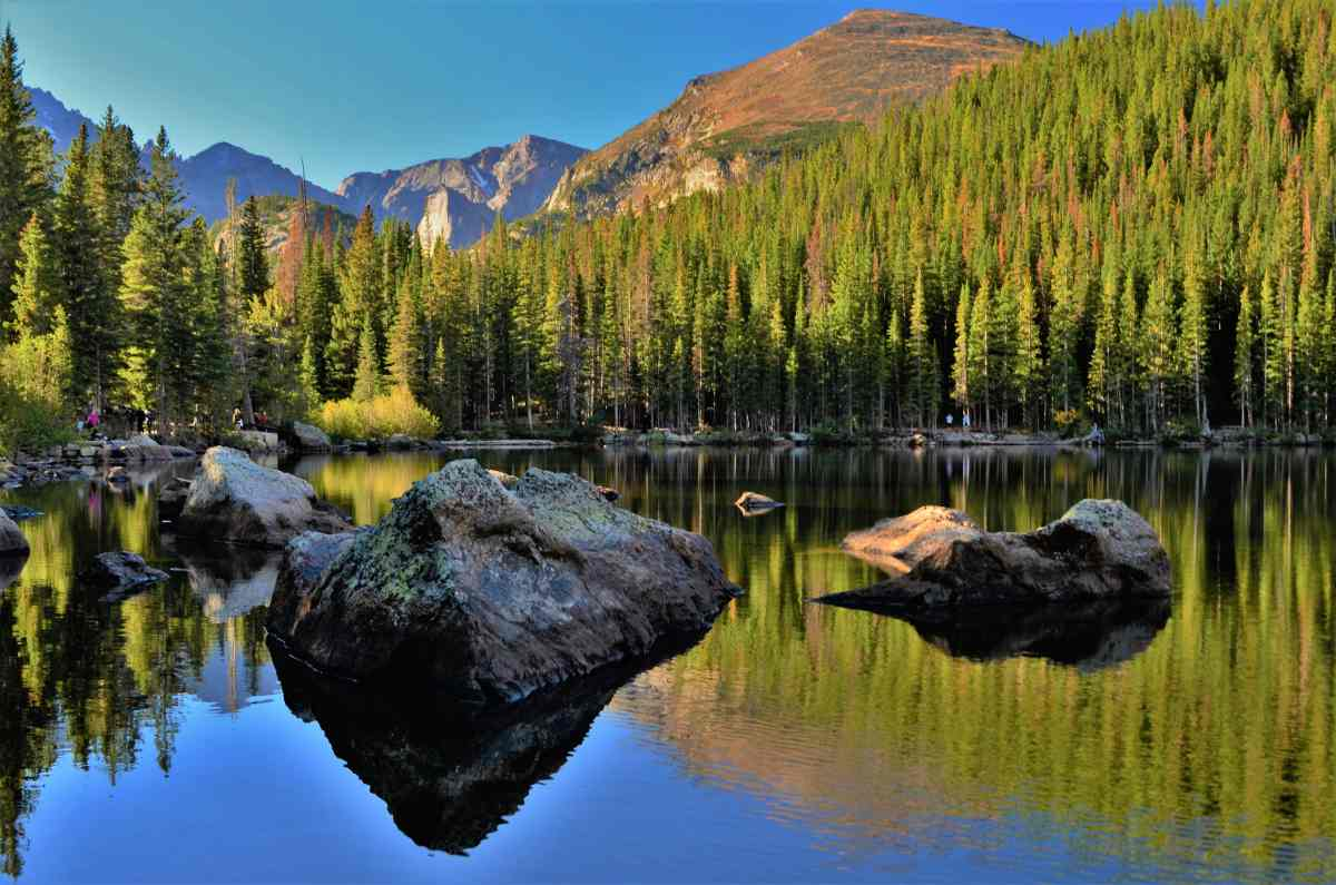 A Colorado Road Trip (Part 1) - In Search of Aspen Gold in Rocky Mountain National Park