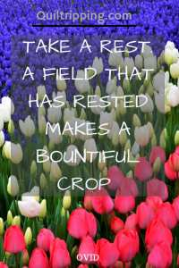 Tkae a rest. A field that rests makes a bountiful crop. #tulips #guhlhanepark #Istanbul #quote