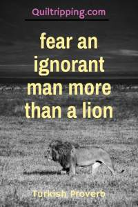 Fear an ignorant man more than a lion #quotes #inspirational quotes #turkishproverb #lion