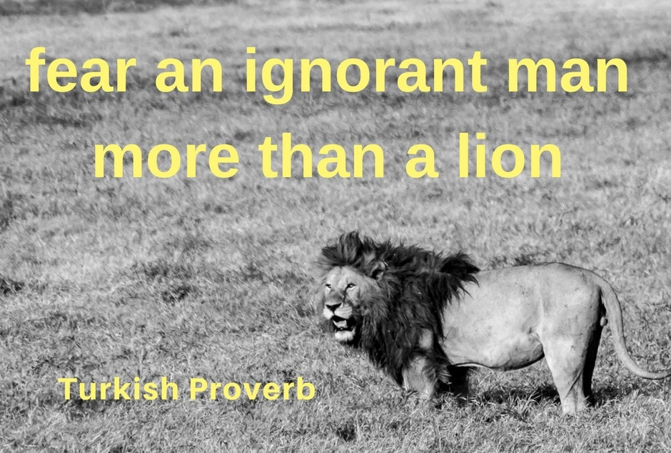 Fear an ignorant man more than a lion