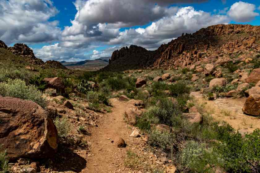 Grapevine Hills Trail Big Bend