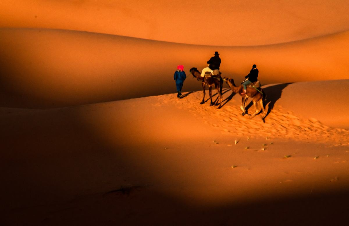 25 Sahara Desert Photos to Inspire Your Next Visit