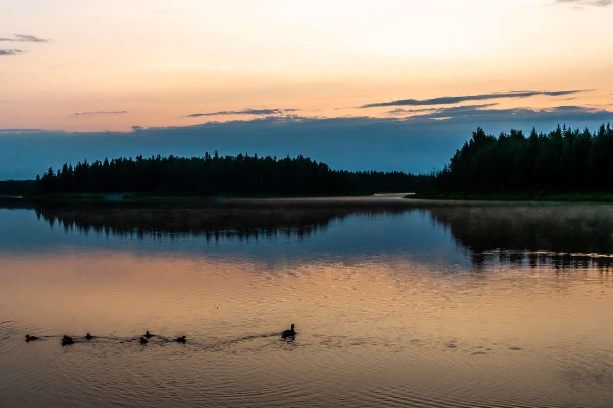 PhotoPOSTcard: Midnight in Fairbanks, Alaska
