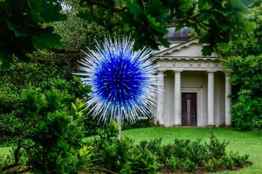 Sapphire Star at Kew