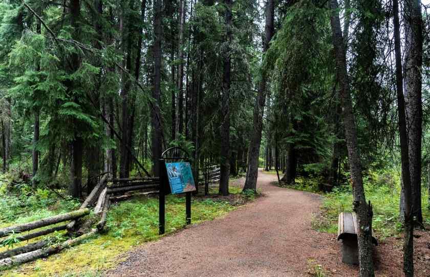 Wedgewood Resort Nature trail