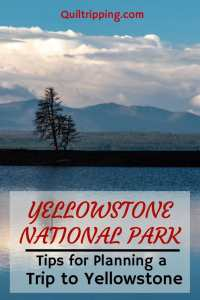 Sharing all my tips for planning a trip to Yellowstone National Park #yellowstone #wyoming