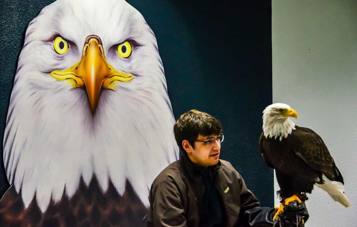 PhotoPOSTcard: Saving an American Symbol