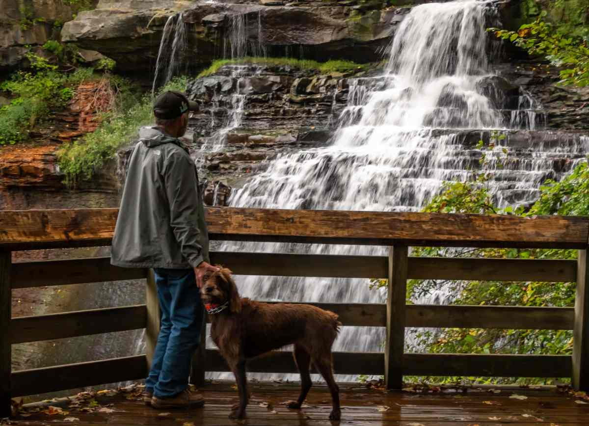 A day trip from Cleveland to Cuyahoga Valley National Park
