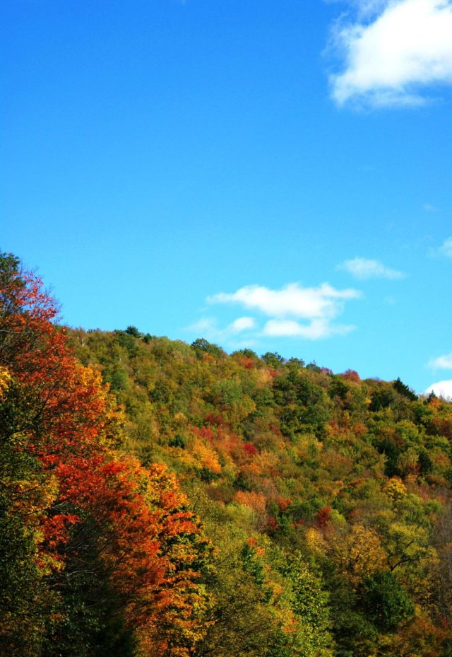 fall in cooperstown