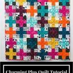 Charming Plus QAL : Piecing The Blocks