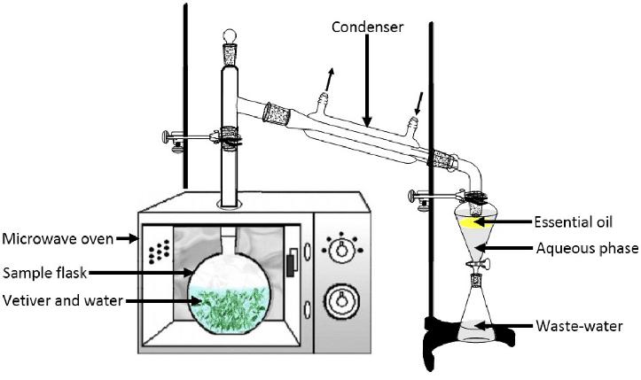 Esquema de montaje de hidrodestilación a presión reducida (2)