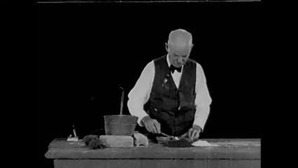 Fotograma de un video de  Acheson  en una demostración