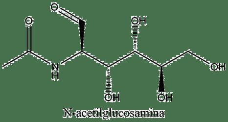 Estructura 2D de la N-acetilglucosamina