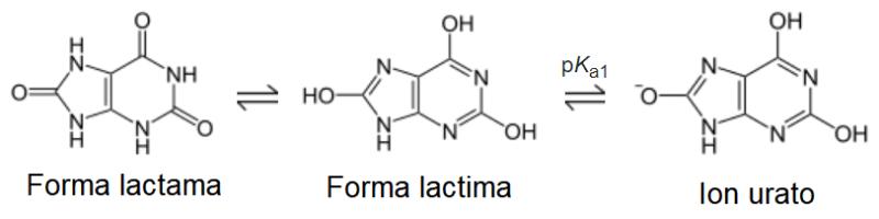 Tautomería del ácido úrico y formación del ion urato