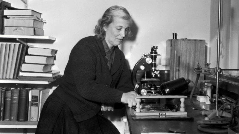 Dorothy Crowfoot Hodgkin en su laboratorio