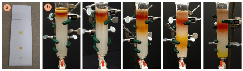 Figura 1: a) Cromatografía en capa fina de la mezcla de ferroceno/acetilferroceno, b) Cromatografía en columna